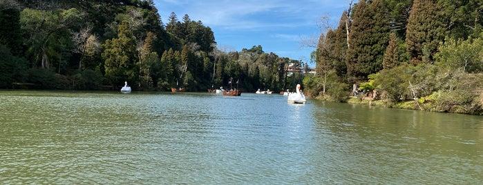 Parque do Lago Negro is one of Sul.