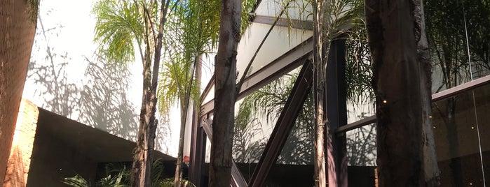 Coco Bambu is one of Orte, die Sergio M. 🇲🇽🇧🇷🇱🇷 gefallen.
