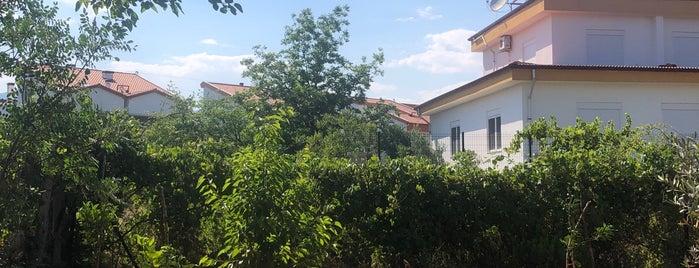 Evdir Han is one of Antalya.