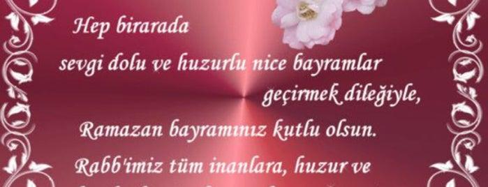Abidler Camii is one of Konya Meram Mescit ve Camileri.