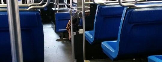 MTA Bus - 5 Av & W 23 St (M1/M2/M3/M55) is one of Diana : понравившиеся места.