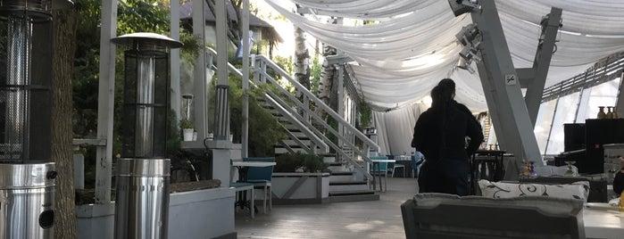 White Restaurant Bar is one of Restaurants 3.