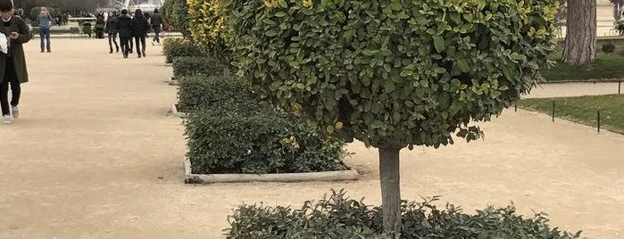 Jardin des Tuileries is one of Karen'in Beğendiği Mekanlar.