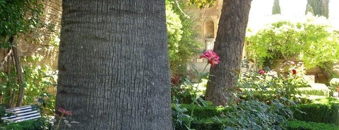 Jardin de los Adarves is one of Granada 2019.