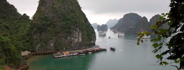 Vịnh Hạ Long (Ha Long Bay) is one of Locais curtidos por Jesse.