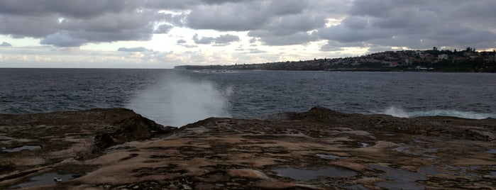 Bondi - Bronte Coastal Walk is one of Locais curtidos por Jesse.