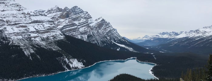 Peyto Lake is one of Viagem Canadá.
