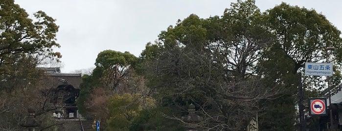 東山五条交差点 is one of Asumiさんのお気に入りスポット.