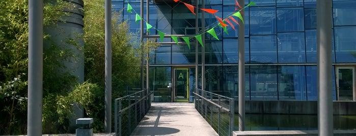 Technische Hochschule Ingolstadt is one of Posti che sono piaciuti a Stéphanie.