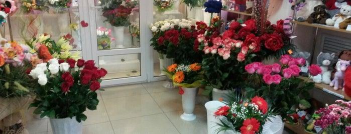 "Магазин ""Цветочный Рай"" is one of สถานที่ที่ Tanya ถูกใจ."