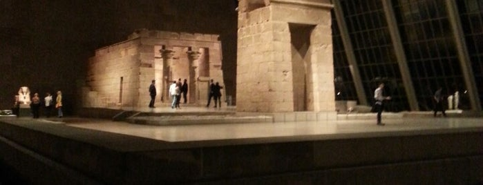 Temple of Dendur is one of NYC.