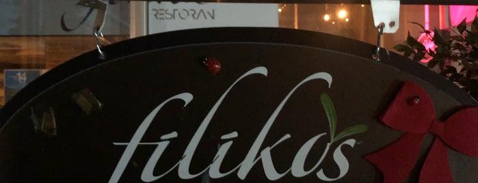Filikos Restoran is one of Evren'in Beğendiği Mekanlar.