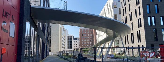 ParkBrug is one of Antwerp.