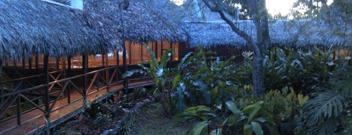 Manish Hotel Ecológico is one of Lugares guardados de Brian.