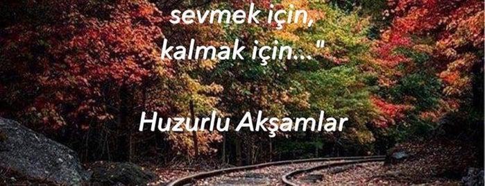 Enbey İskender is one of Yeşilköy ~ Bakırköy~Beylikdüzü.