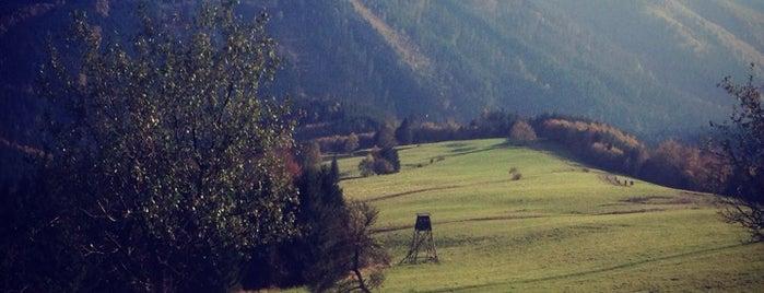 Chata Kamenitý is one of Turistické chaty SK, CZ, PL.