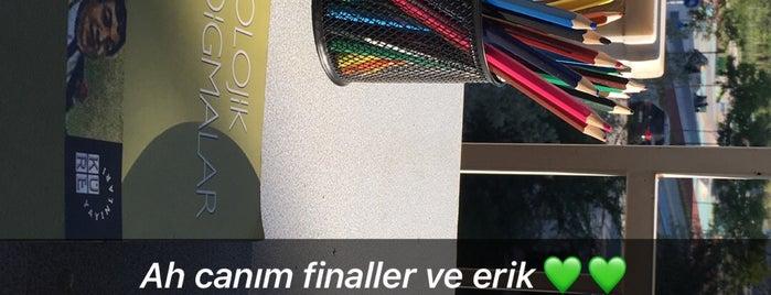 .🏡 :) is one of สถานที่ที่ Şule ถูกใจ.
