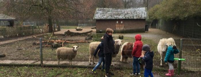 Tierpark Kleve is one of Tempat yang Disukai Beyza.