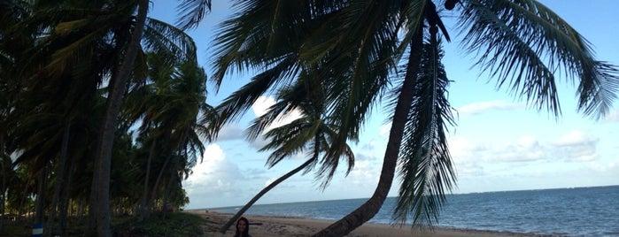 Praia do Patacho - Rota Ecológica dos Milagres is one of Lugares favoritos de Lilian.