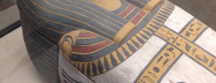 Museu do Louvre is one of Locais curtidos por Priscilla.