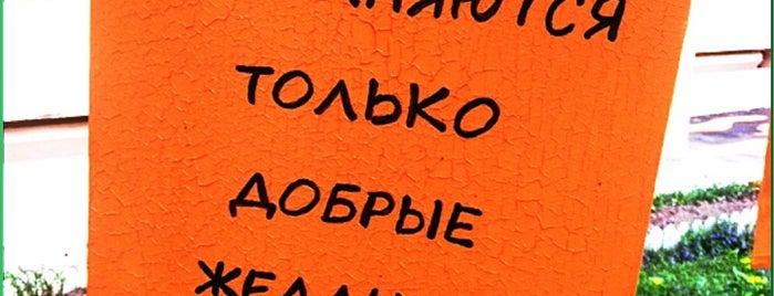 Дерево оранжевых желаний is one of Lugares favoritos de Студия KateMagic.