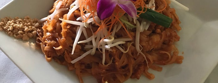 Orchid Thai Cuisine is one of RESTAURANTS.