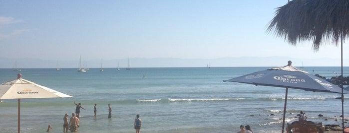 El Anclote Beach is one of Regina 님이 좋아한 장소.