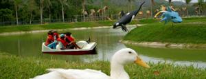 Parque Temático Bosque Macuto is one of 5 lugares en Lara que puedes visitar en vacaciones.