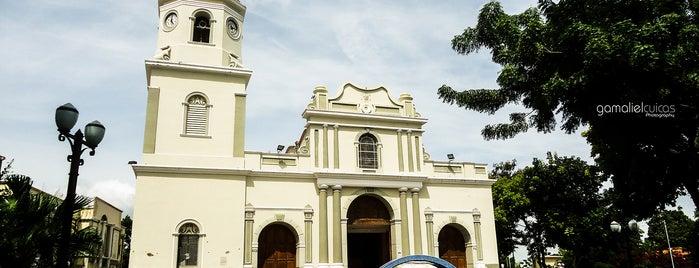Santuario de la Divina Pastora is one of Principales iglesias católicas en Barquisimeto.