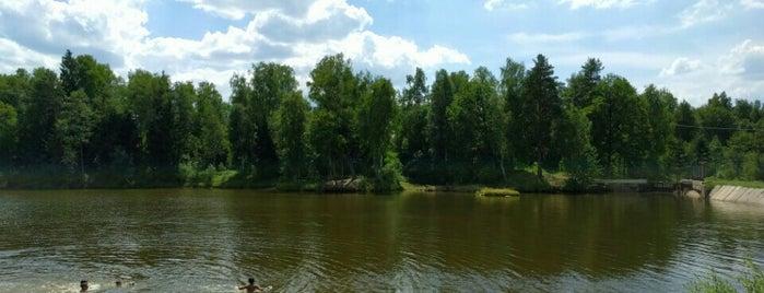 Пруд в Арнеево is one of Locais curtidos por Ivan.