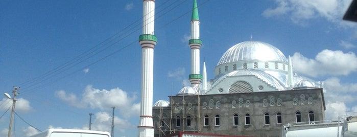 Diyarbakır Organize Sanayi Bölgesi is one of Orte, die Aykut gefallen.