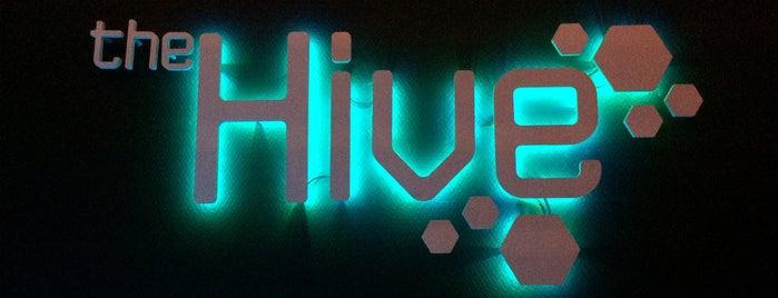 The Hive lounge club is one of Sasha'nın Kaydettiği Mekanlar.