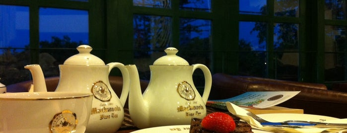 Tea Breeze is one of Colombo.
