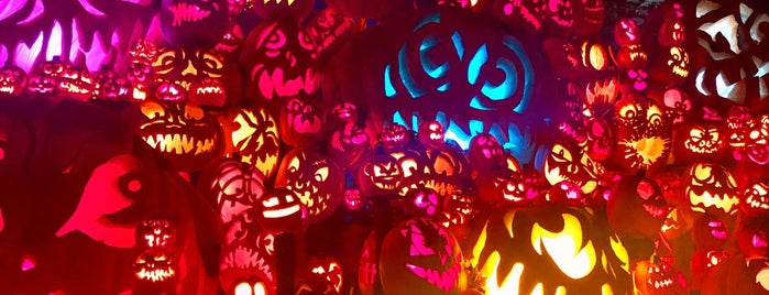 Jack O' Lantern Spectacular is one of Matthewさんのお気に入りスポット.