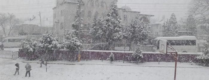 Reşadiye İlköğretim Okulu is one of Orte, die Ahmet gefallen.