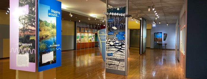 Underground Adventure is one of Chicago Museum.