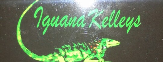 Iguana Kelley's is one of Pub Crawl, Anyone?.