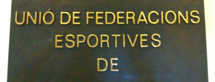 Unió de Federacions Esportives de Catalunya is one of Others.