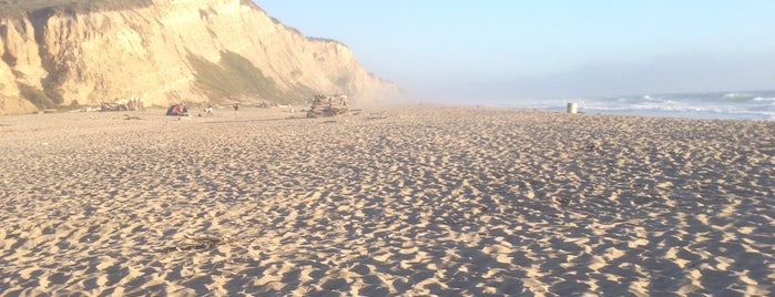 San Gregorio State Beach is one of Lugares guardados de O.