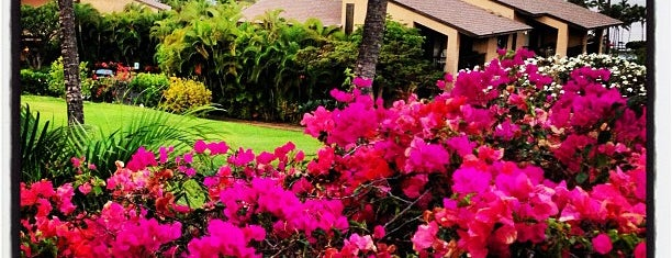 Wailea Ekahi Village is one of Maui 2018.