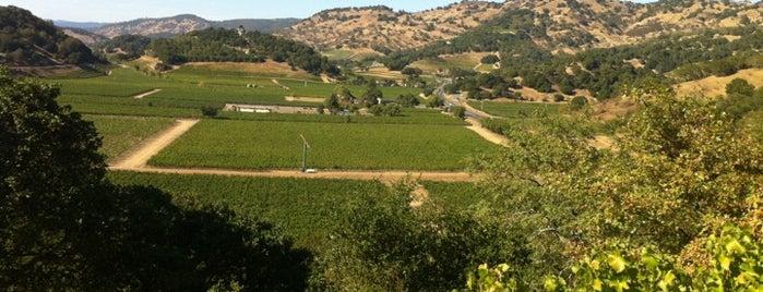 Silverado Vineyards is one of Wineries.