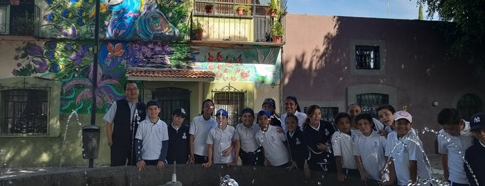 Barrio de Xanenetla is one of Puebla.