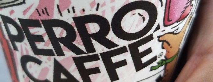 Perro Caffé is one of Lugares favoritos de Lilibeth.