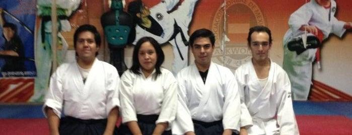 Academia Sombae Do Nueva Santa Maria is one of Lalo'nun Beğendiği Mekanlar.