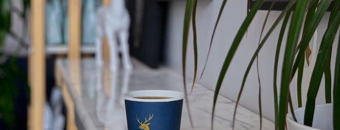 Deers Cafe is one of Tempat yang Disimpan Queen.