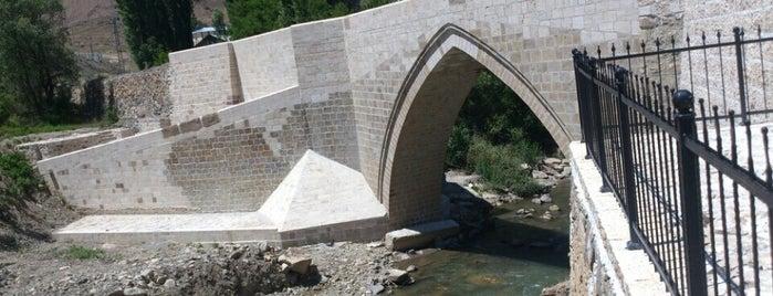 Pehlivanlı Beldesi is one of Şahnygun'un Beğendiği Mekanlar.