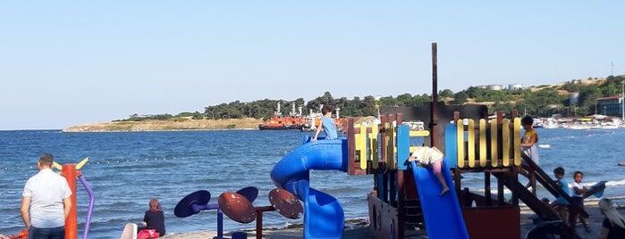 Kadınlar plajı is one of Li.