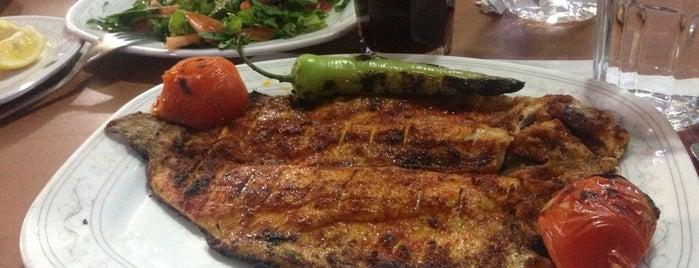 Karsu Et ve Alabalık Restaurant is one of Cihan : понравившиеся места.