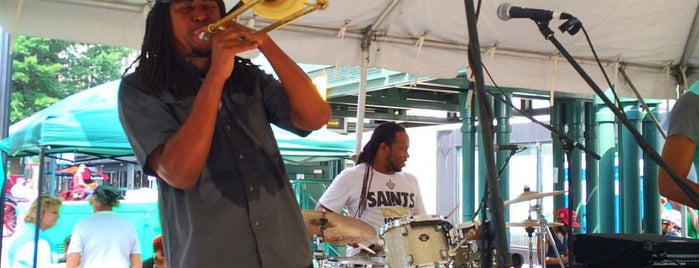 Memphis Music and Heritage Festival is one of 1000 Places to See Before You Die - Midwest.