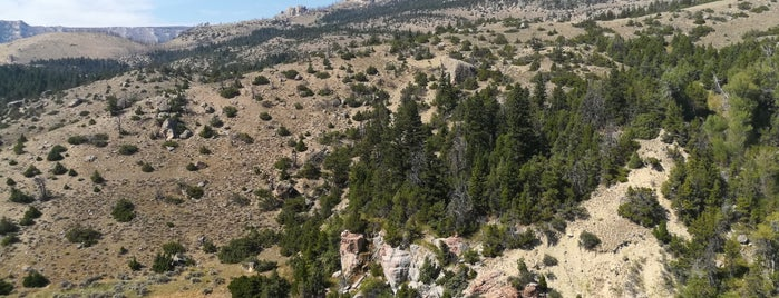 Bighorn National Forest is one of National Recreation Areas.